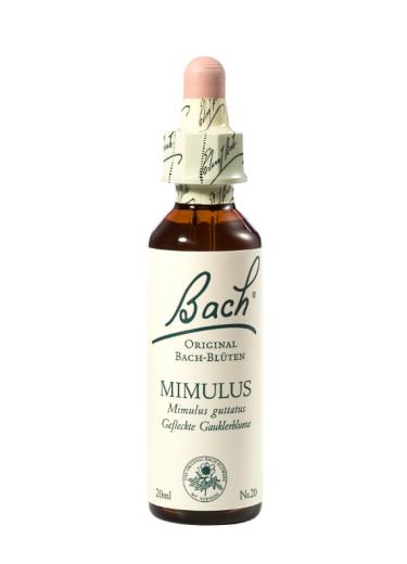 Bach Mimulus, kapljice št. 20 - krinkar, 20 ml