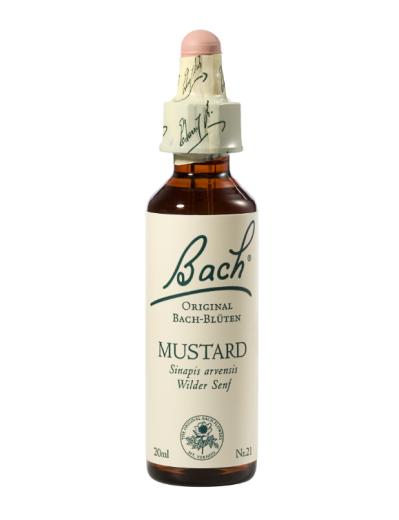 Bach Mustard, kapljice št. 21 - njivska gorjušica, 20 ml