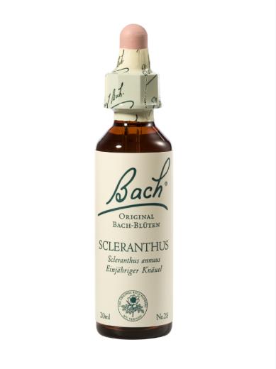 Bach Scleranthus, kapljice št. 28 - mešič, 20 ml