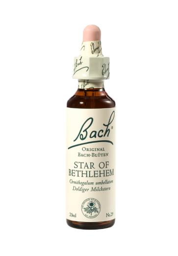 Bach Star of Bethlehem, kapljice št. 29 - Betlehemska zvezda, 20 ml