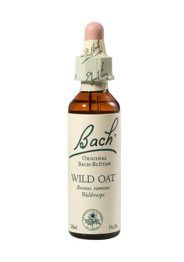 Bach Wild Oat, kapljice št. 36 - divji oves, 20 ml