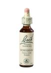 Bach Hornbeam, kapljice št. 17 - gaber, 20 ml
