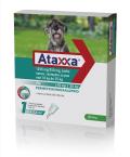 Ataxxa 1250 mg/250 mg, kožni nanos - za pse nad 10 kg do 25 kg, 1 kapalka