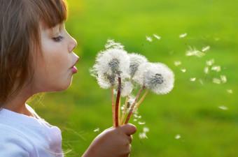Alergije - ko pride pomlad