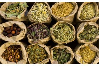 Izdelki iz zdravilnih rastlin